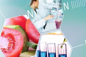 Dictamen científico de la EFSA sobre los riesgos para la salud pública asociados a la presencia de perclorato en los alimentos, en particular frutas y verduras